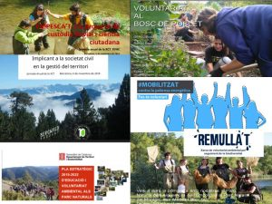6 projectes de voluntariat ambiental