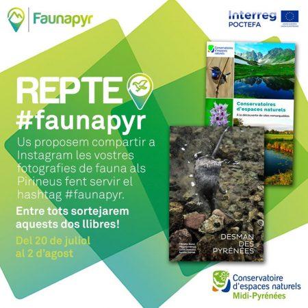 Faunapyr
