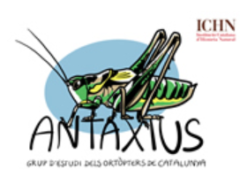 Logo Antaxius