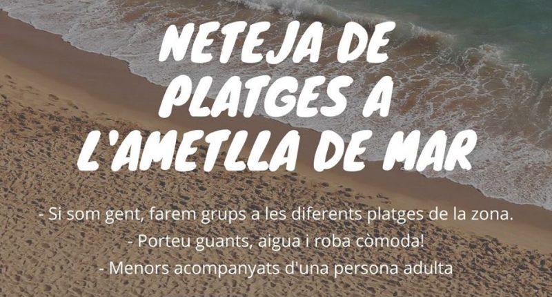 Plancton Neteja