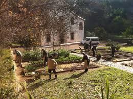 Associació d'amics del Jardí Botànic de Barcelona