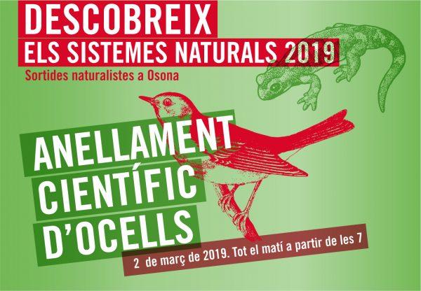 Anellament Grup Naturalistes d'Osona