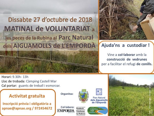 Voluntariat ambiental amb Apnae