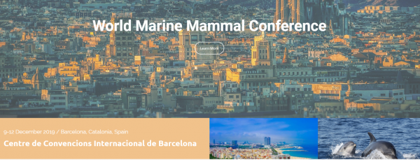 barcelona mamifers marins