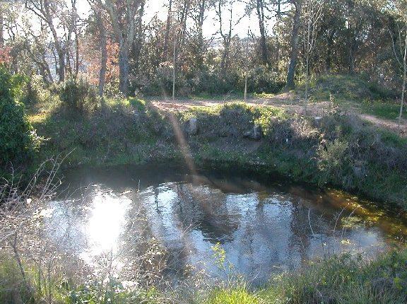 bassa montilivi a Girona
