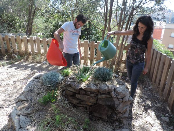Voluntariat ambiental a Bosc de Turull