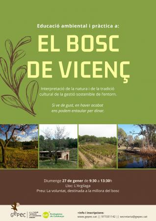 Bosc de Vicenç