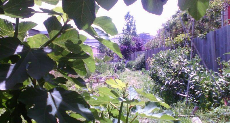 casa orlandai espai gardenyes
