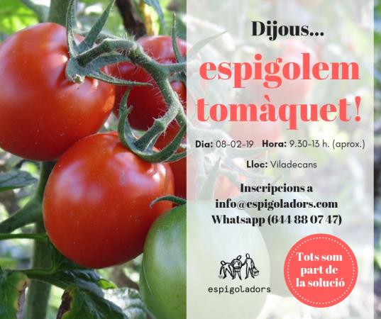 espigolada de tomaquets