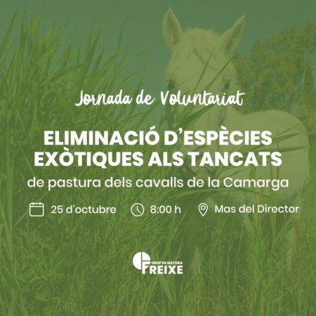 voluntariat ambiental a la Reserva Natural de Sebes