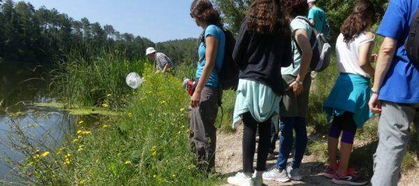 Grup de Naturalistes d'Osona