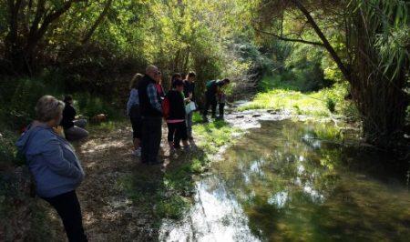 habitats riu de bitllles