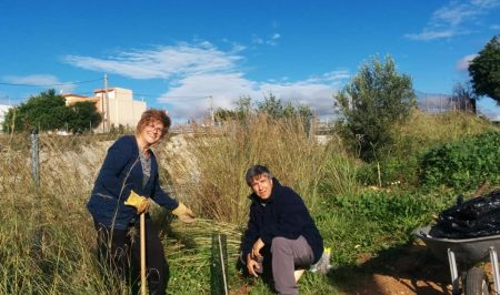 Voluntariat ambiental amb l'Ortoll