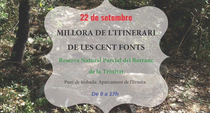Voluntariat forestal a Poblet amb el Gepec