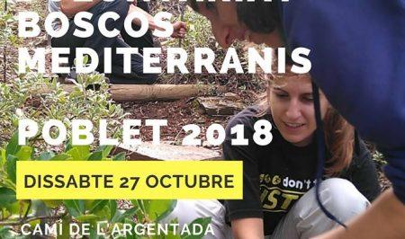 Voluntariat ambiental a Poblet amb el Gepec