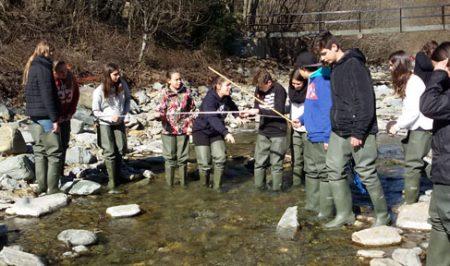 Projecte Rius Voluntariat Ambiental