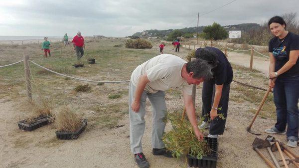 Voluntariat a la platja d'Altafulla