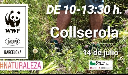 Voluntariat ambiental a Collserola