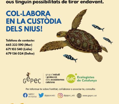 Gepec Tortuga Pineda
