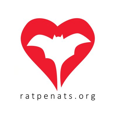 Logo Ratpenats