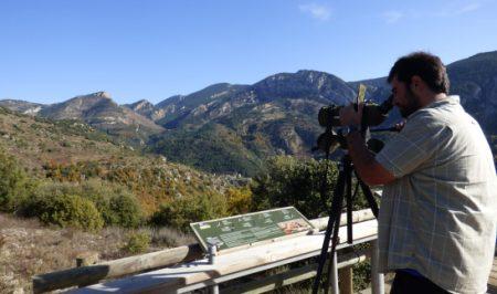 Voluntariat ambiental forestal amb la Fundació Catalunya La Pedrera