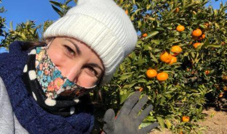 espigolada mandarines gener