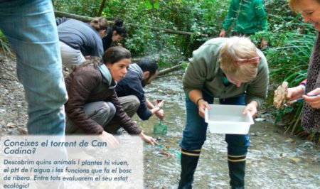 Voluntariat ambiental a Cerdanyola