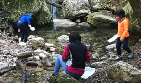 projecte rius vilanova de sau